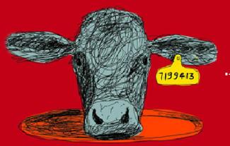 Se niente importa. Perché mangiamo gli animali? di Jonathan Safran Foer (Guanda Editore)